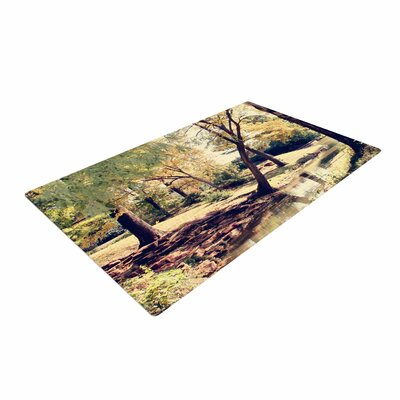 Sylvia Coomes Walk in the Park Photography Green Area Rug
