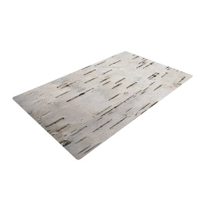 Susan Sanders Painted Tree Rustic White Area Rug Rug Size: 2 x 3