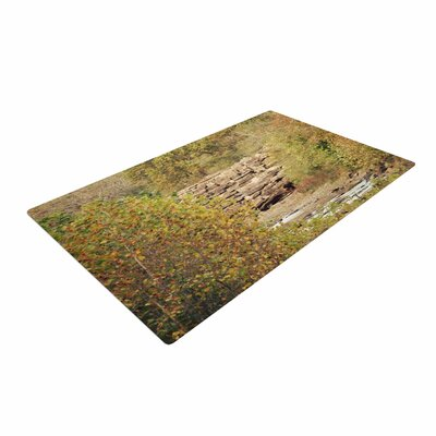 Sylvia Coomes in the Woods 4 Green/Nature Area Rug