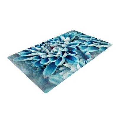 Susan Sanders Floral Paradise Blue Area Rug Rug Size: 4 x 6