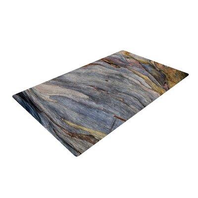 Susan Sanders Milky Wood Gray/Brown Area Rug Rug Size: 4 x 6