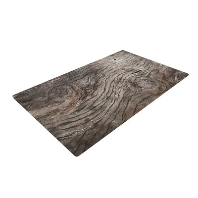 Susan Sanders Tree Bark Wooden Brown Area Rug Rug Size: 4 x 6