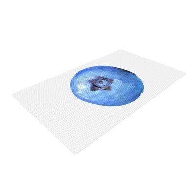 Theresa Giolzetti Blueberry Blue/White Area Rug