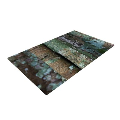 Susan Sanders Into the Woods Rustic Brown Area Rug Rug Size: 4 x 6