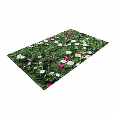 Susan Sanders Flower Vine Wall Magenta/Green Area Rug