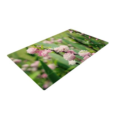 Beth Engel The Best Things Green/Pink Area Rug Rug Size: 2 x 3