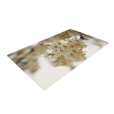 Angie Turner Flowering Pear Petals White Area Rug Rug Size: 4 x 6