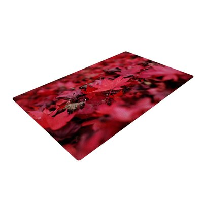Angie Turner Leaves Maroon Red Area Rug Rug Size: 4 x 6