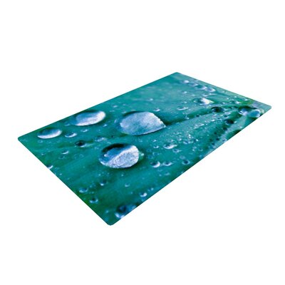 Iris Lehnhardt Water Droplets Teal/Aqua Area Rug Rug Size: 2' x 3'