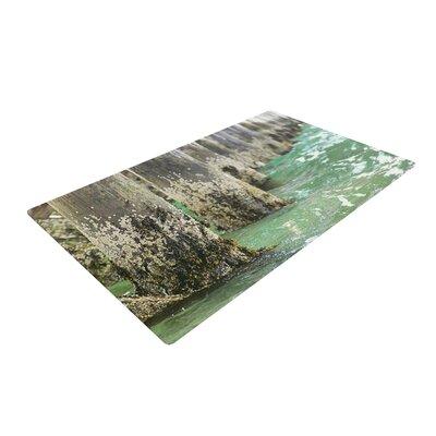 Debbra Obertanec Saltwater Pylons Wooden Gray/Green Area Rug Rug Size: 4 x 6