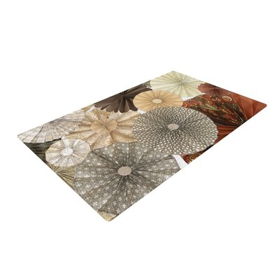 Heidi Jennings Dusty Road Brown/Tan Area Rug Rug Size: 2 x 3