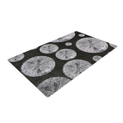 Iris Lehnhardt Pyrite Black/Gray Area Rug Rug Size: 4 x 6