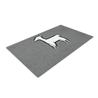 Monika Strigel Llama One Gray Area Rug Rug Size: 2 x 3