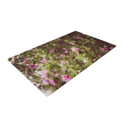 Ann Barnes Lush Green/Pink Area Rug Rug Size: 4 x 6