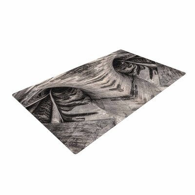Bruce Stanfield Dam Reticulation the Void Black/White Area Rug