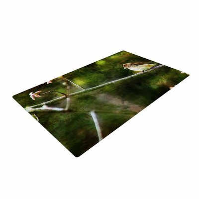 Ginkelmier Painted Songbird Green/Nature Area Rug Rug Size: 4 x 6