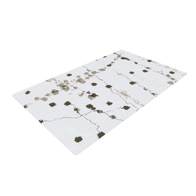 CarolLynn Tice Wonder Brown/White Area Rug