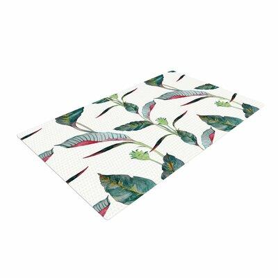 DLKG Design Ana Black/Olive Area Rug Rug Size: 4 x 6