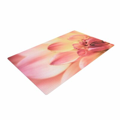 Debbra Obertanec Pastels of Spring Floral Pink Area Rug Rug Size: 4 x 6