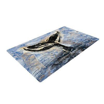 Josh Serafin Whale Tail Painting Coastal/Black Area Rug Rug Size: 2 x 3
