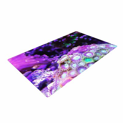 Liz Perez Coral Reef Purple/Black Area Rug Rug Size: 2 x 3