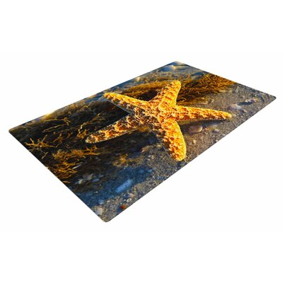 Philip Brown Starfish Coral/Gold Area Rug