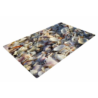 Philip Brown Seashells on the Beach Coral/Nature Area Rug