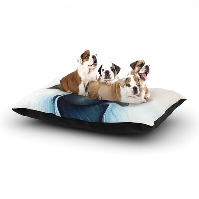 Graham Curran Lucid Dog Pillow with Fleece Cozy Top Size: Small (40 W x 30 D x 8 H)