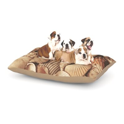 Heidi Jennings Shells Tag Dog Pillow with Fleece Cozy Top Size: Small (40 W x 30 D x 8 H)
