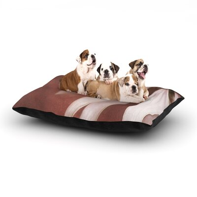 Iris Lehnhardt Copper and Pale Pink Flower Dog Pillow with Fleece Cozy Top Size: Large (50 W x 40 D x 8 H)