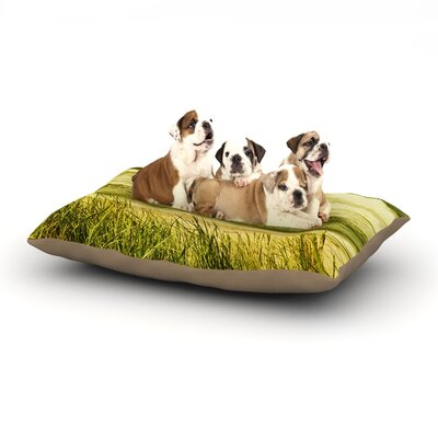 Iris Lehnhardt Dunes and Waves Water Dog Pillow with Fleece Cozy Top Size: Large (50 W x 40 D x 8 H)