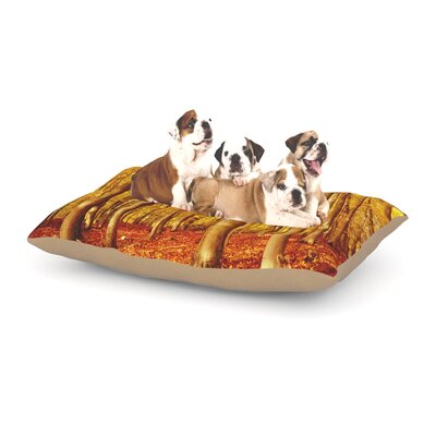 Iris Lehnhardt Forest Colors Dog Pillow with Fleece Cozy Top Size: Small (40 W x 30 D x 8 H)