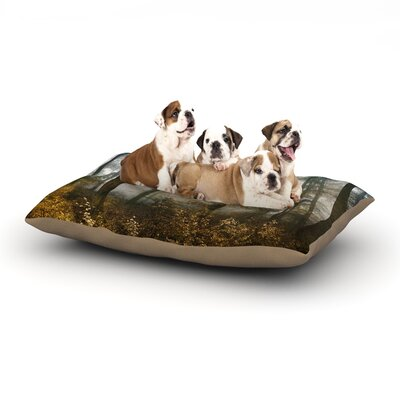 Iris Lehnhardt Forest Mystics Dog Pillow with Fleece Cozy Top Size: Small (40 W x 30 D x 8 H)