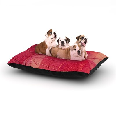 Ingrid Beddoes Delicate Leaves Dog Pillow with Fleece Cozy Top Size: Large (50 W x 40 D x 8 H)