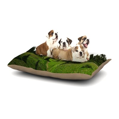 Robin Dickinson Going to the Mountains Dog Pillow with Fleece Cozy Top Size: Large (50 W x 40 D x 8 H)