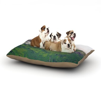 Ann Barnes Adventure is Waiting Mountain Dog Pillow with Fleece Cozy Top Size: Small (40 W x 30 D x 8 H)