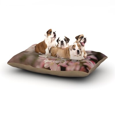 Angie Turner Apple Blossoms Flower Dog Pillow with Fleece Cozy Top Size: Large (50 W x 40 D x 8 H)