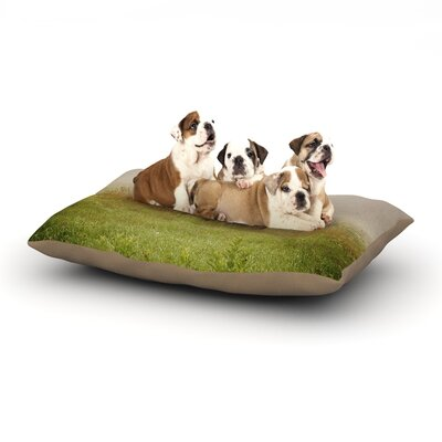Angie Turner Forgotten Car Grass Dog Pillow with Fleece Cozy Top Size: Small (40 W x 30 D x 8 H)