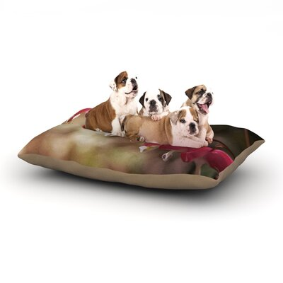 Angie Turner 'Bleeding Hearts' Flower Dog Pillow with Fleece Cozy Top Size: Small (40
