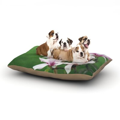 Angie Turner Magnolias Dog Pillow with Fleece Cozy Top Size: Small (40 W x 30 D x 8 H)