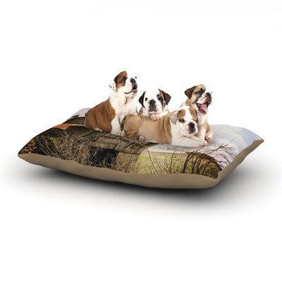 Angie Turner Mail Pouch Barn Wooden House Dog Pillow with Fleece Cozy Top Size: Small (40 W x 30 D x 8 H)