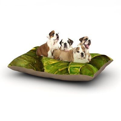Rosie Brown Tropical Garden Leaf Dog Pillow with Fleece Cozy Top Size: Small (40 W x 30 D x 8 H)