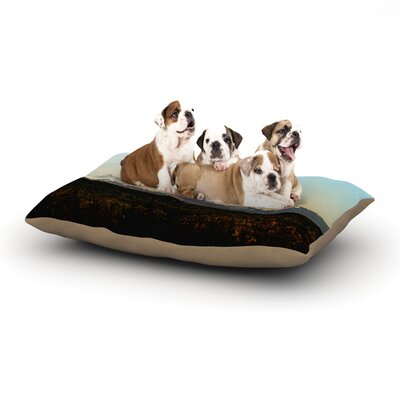 Sylvia Cook Mt. Rainier Mountain Photo Dog Pillow with Fleece Cozy Top Size: Small (40 W x 30 D x 8 H)