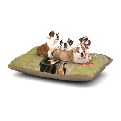 Robin Dickinson Sassy Pants Dog Pillow with Fleece Cozy Top Size: Large (50 W x 40 D x 8 H)