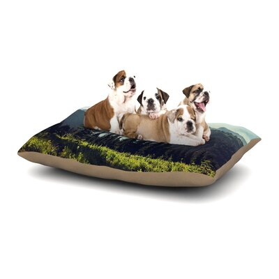 Sylvia Cook Discover Your Northwest Landscape Dog Pillow with Fleece Cozy Top Size: Small (40 W x 30 D x 8 H)