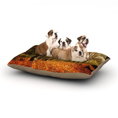 Sylvia Cook Autumn Leaves Rustic Dog Pillow with Fleece Cozy Top Size: Small (40 W x 30 D x 8 H)