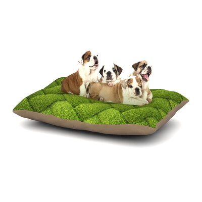 Susan Sanders Ivy Basket Weave Dog Pillow with Fleece Cozy Top Size: Large (50 W x 40 D x 8 H)