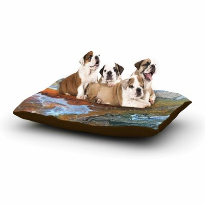 Carol Schiff Geologic Veins Dog Pillow with Fleece Cozy Top Size: Small (40 W x 30 D x 8 H)