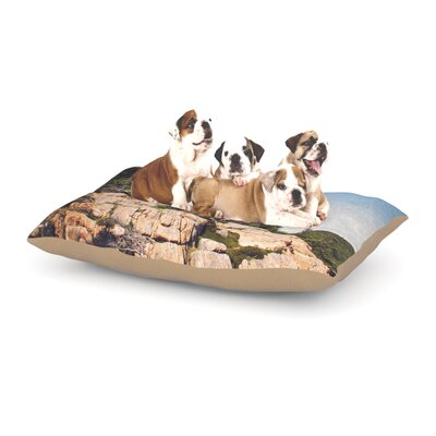 Deon Jillian Audrey Windswept Cliffs Dog Pillow with Fleece Cozy Top Size: Small (40 W x 30 D x 8 H)