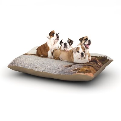 Jillian Audrey The Maine Coast Coastal Dog Pillow with Fleece Cozy Top Size: Small (40 W x 30 D x 8 H)